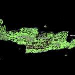 Μαλανδράκης: Να συσχετιστεί το ΟΣΔΕ με τους Δασικούς χάρτες.