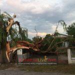 Καρδίτσα: Τεράστιες καταστροφές από μεγάλης έντασης μπουρίνι και χαλαζόπτωση.